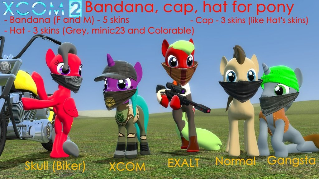 Bandana, Cap, Hat for pony