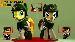 Pony Imperial Guard Armor