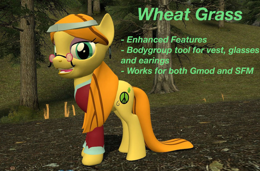 Wheat Grass model