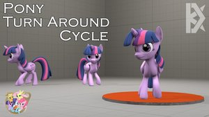 Pony Turn Around Cycle